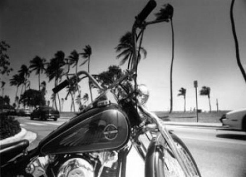 Harley Davidson, Miami