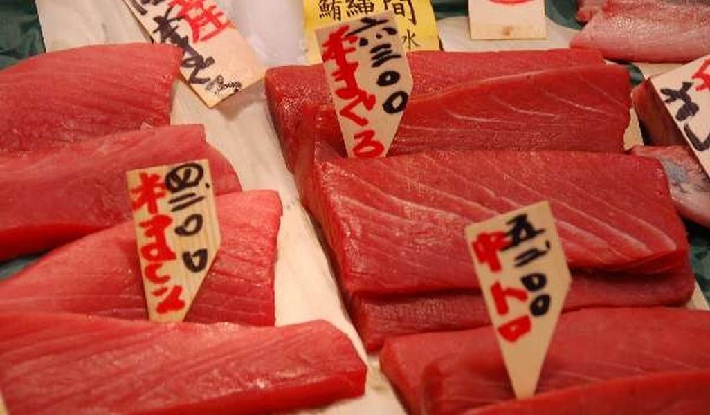 Mercado del pescado, Tokio Japon