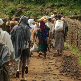 Arrival in Addis Abeba
