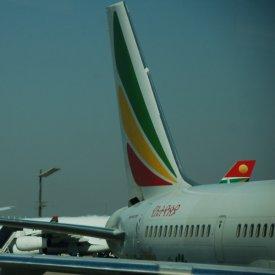 Llegada a Arusha