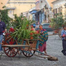 Arrival in Antigua