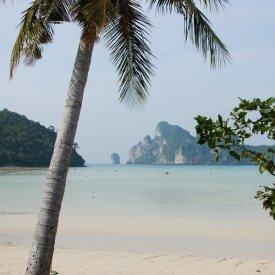 Phi PhiIslands: Phi Phi Don, Mosquito Island and Bamboo Island.