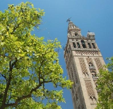 Seville: Santa Cruz and Arenal