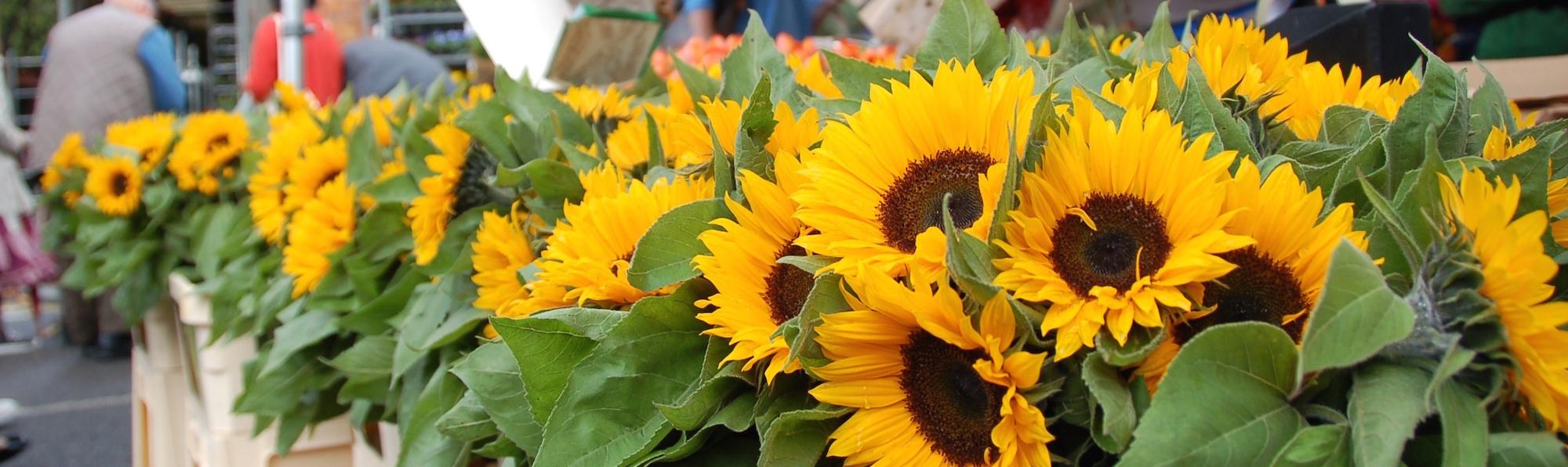 Mercado de las flores Columbia Road, Londres