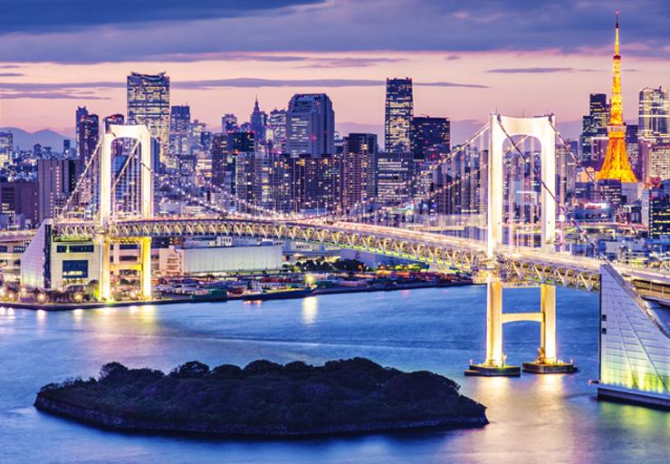 viajar a Tokio en 5 días