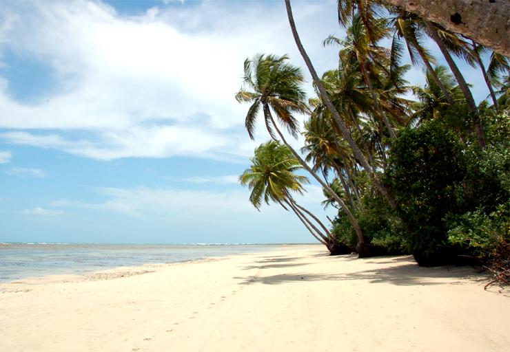 viajar a Brasil en 19 días (oct-mar)