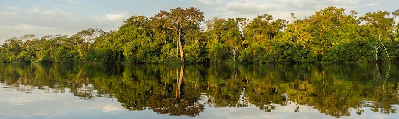 Expedición por el Amazonas