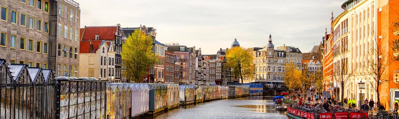 El mercado de las flores de Amsterdam