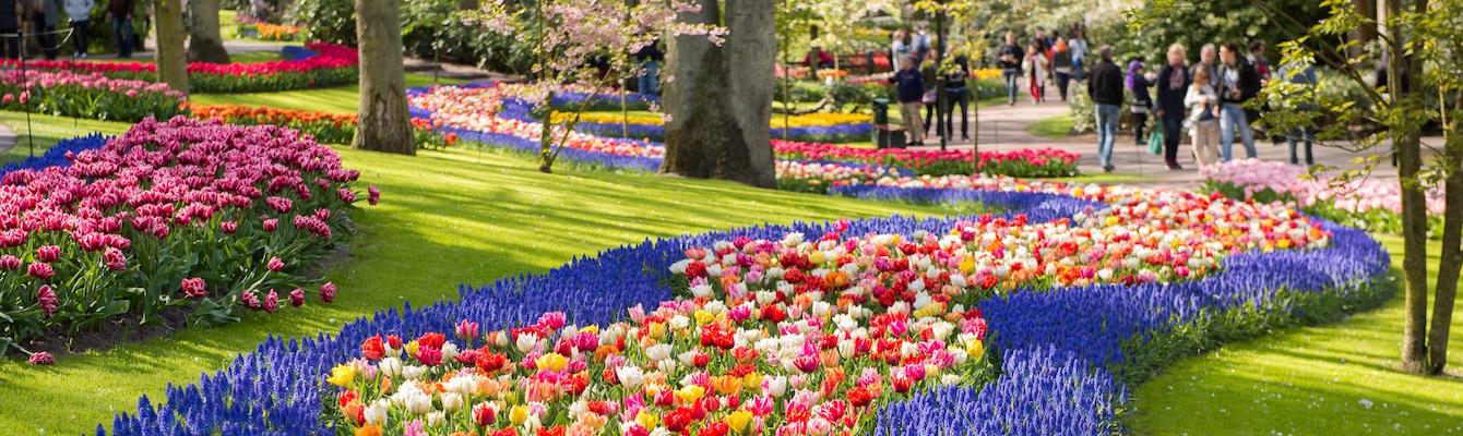 El parque Keukenhof de Amsterdam