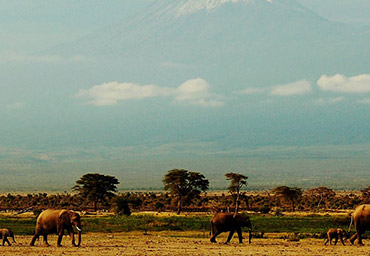 Kenya in 9 days for independent travellers