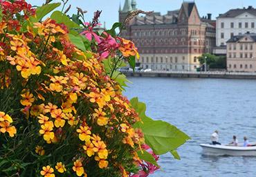 Escapada Estocolmo en 4 días